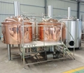 7bbl brewery beer machine /direct gas fired brewing equipment