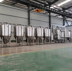 500L Restaurant Brewery Equipment / Beer Brewing Equipment for Sale