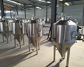 300L Mini beer brewing equipment / microbrewery for pub