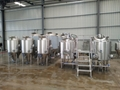 Microbrewery Equipment / 500L Beer Making Machine for Sale