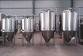 1000L Per Day Beer Brewing Equipment / Beer Brewery Machine