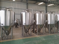 10bbl microbrewery / beer equipment restaurant for sale