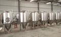 Beer fermentation tank unitank beer equipment