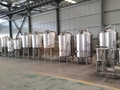 Microbrewery, turnkey beer brewing system