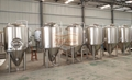 500L, 5bbl beer fermentation tank/unitanks, bright beer tank