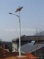 30W太阳能LED路灯 1