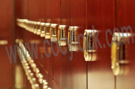 RFID locker lock 2