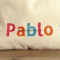 6 + party bags - three colours text -