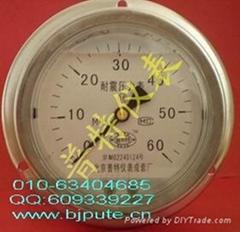 不锈钢轴向带边耐震压力表YTN60/100/150ZT