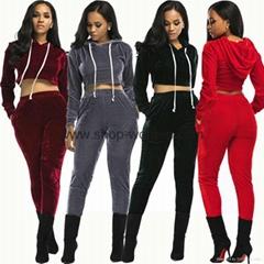 Velvet Hooded Crop Top And Long Pants Set
