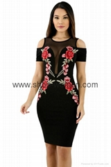 Embroidery Cold Shoulder Mesh Insert Bodycon Dress