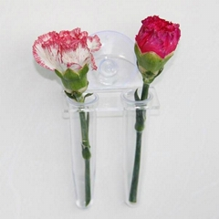 Window Vases Suction Cup Vase Flower Vases