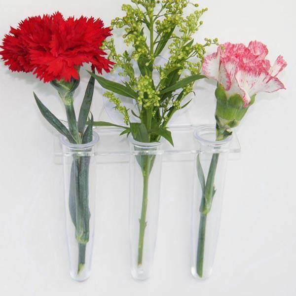 吸盘花瓶 2