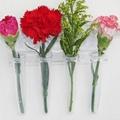 吸盘花瓶 3