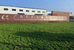 Guangxi Chentian Metal Product Co., Ltd