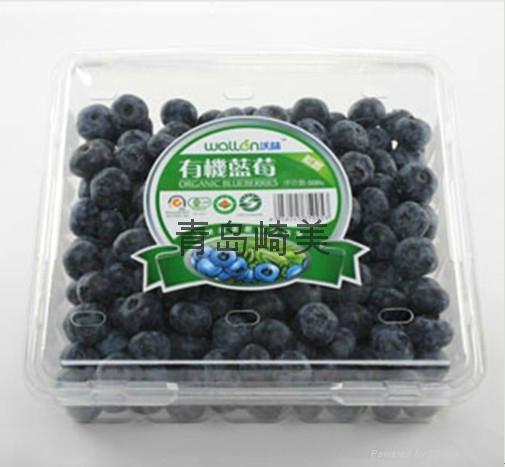 藍莓包裝盒 1
