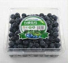 蓝莓包装盒