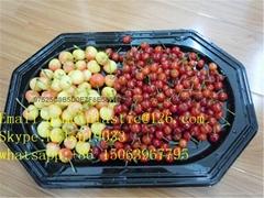 食品包装盒托盘