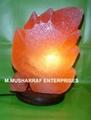 ROCK SALT CRYSTAL LEAF LAMP