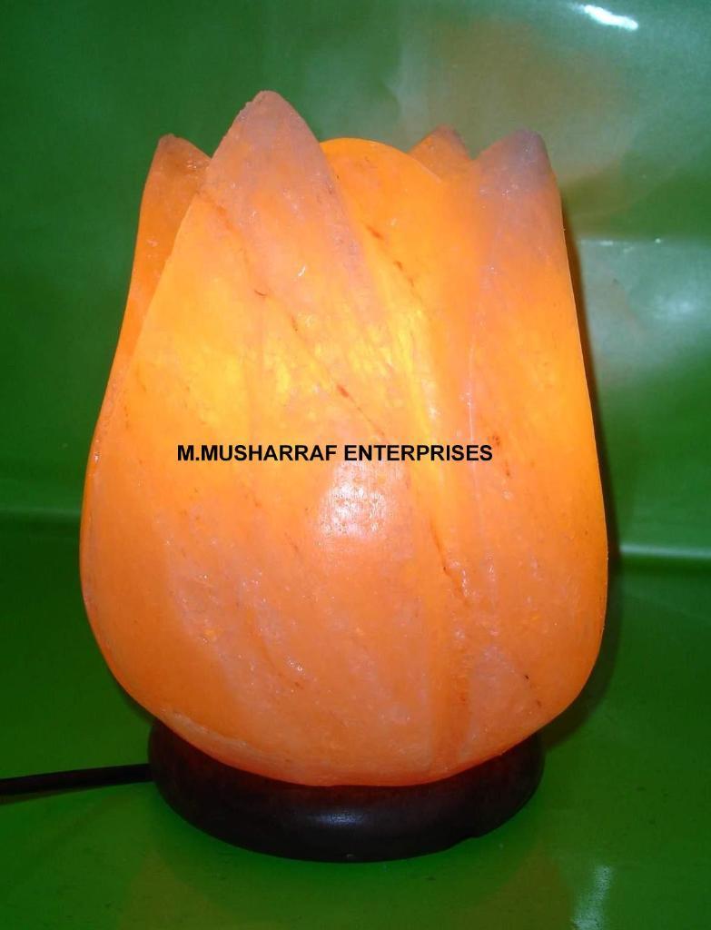 ROCK SALT FLOWER LAMP 1