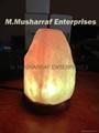 HIMALAYAN SALT USB NATURAL TINY LAMP