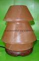 HIMALAYAN ROCK SALT CRYSTAL UMNERELLA Lamp. 2