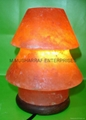 HIMALAYAN ROCK SALT CRYSTAL UMNERELLA Lamp.