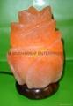 HIMALAYAN ROCK SALT CRYSTAL RED ROSE LAMP