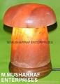 HIMALAYAN ROCK SALT CRYSTAL MASHROOM LAMP 2