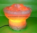 HIMALAYAN ROCK SALT CRYSTAL FIRE BOWL LAMP 3
