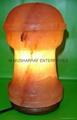 HIMALAYAN ROCK SALT CRYSTAL WORLD CUP LAMP 1