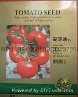 安莎迪番茄种子产品 1