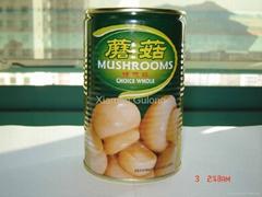 Canned Mushroom 400G/425