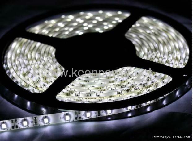 5M 3528 白光LED灯条 2