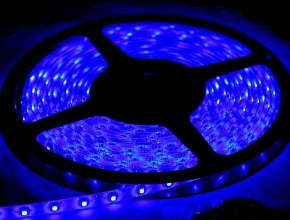 10m 3528 flexible led strip smd led tube type blue waterproof 60 leds m ls009 kp china. Black Bedroom Furniture Sets. Home Design Ideas