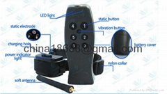 Remote shock collar for