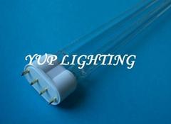紫外線殺菌燈管TUV PL-L 60W 2G11 HO UVC