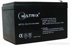音响音箱蓄电池 12V 12AH