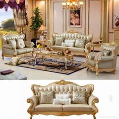 Living Room Sofas for Ho