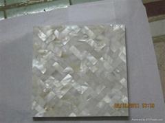 貝殼裝飾板