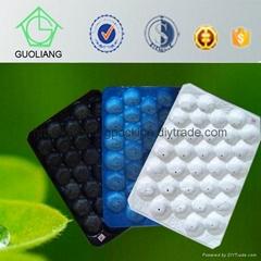 China Manufacturer 29x39cm 29x49cm Plastic Fruit Insert Tray