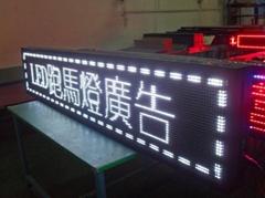 P10白光LED 显示屏