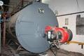 6 Ton gas steam boiler