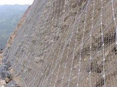 包头钢丝绳网