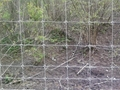 包头草原围栏网