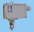 PKG压力控制器,PKG0.6
