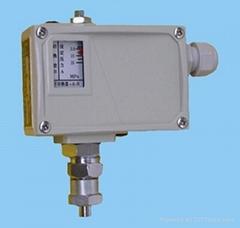 PKG压力控制器,PKG0.6AIM压力控制器厂家