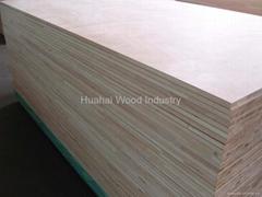 Falcata Core Blockboard