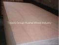 Red Meranti Plywood Okoume Triplay with Hardwood Core