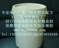 新型白乳膠乳白膠生產可行性報告 2